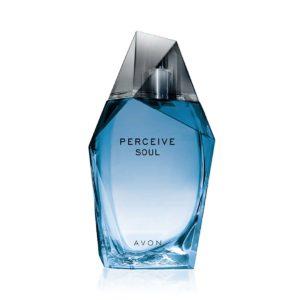 Avon Perceive Soul Erkek Parfüm EDT 100 ml